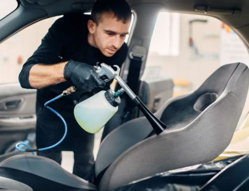Mold Growing In Your Car? Here's How To Kill It