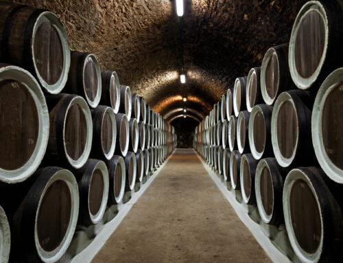 Wine Cellar Mold Prevention & Removal Tips