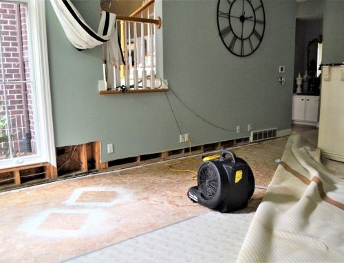 What Are The Types of Water Damage Categories?